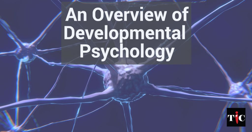 An Overview of Developmental Psychology
