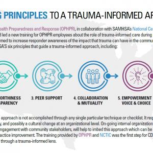 TIC in Organizations: Six Key Principles